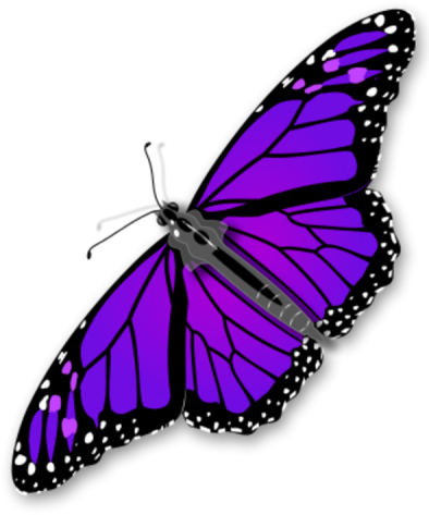Purple Butterfly Transparent