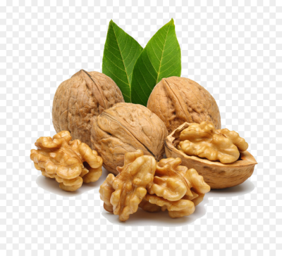 Walnut Clip art - walnuts png download - 1000*896 - Free ...