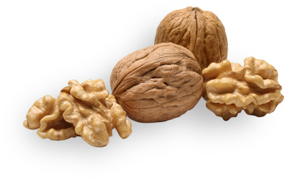 Download Walnuts PNG Picture For Designing Projects - Free ...
