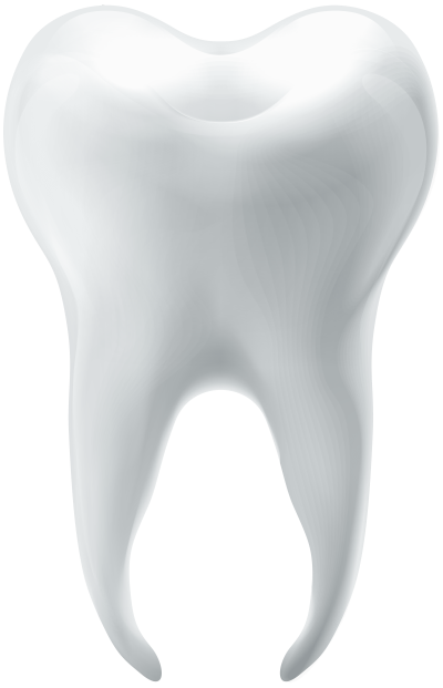 molar-tooth