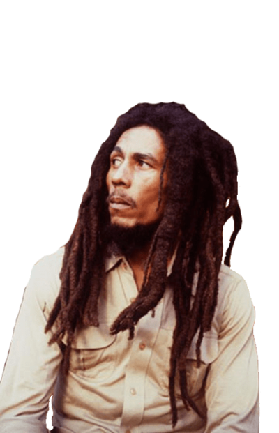 Bob Marley Looking Left transparent PNG - StickPNG