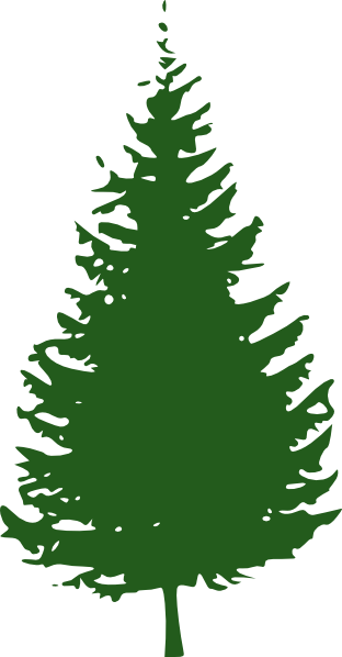 Free Redwood Tree Cliparts, Download Free Clip Art, Free Clip Art ...