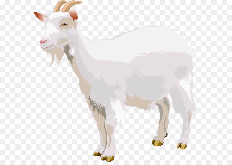 Boer goat Sheep Three Billy Goats Gruff Clip art - sheep png ...