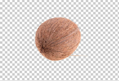 First Language Coconut Lesson Finnish Walnut PNG, Clipart, Big ...