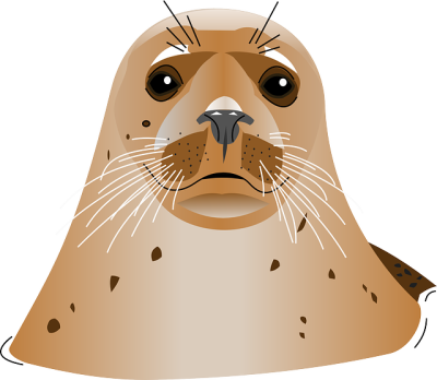 Harbor-background-seal-transparent