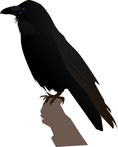 Common Raven Transparent PNG