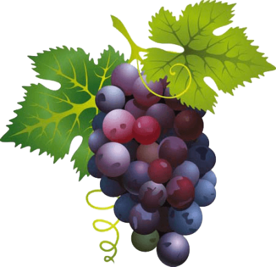Grape Png Image Download Picture