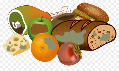 Fast food Vegetarian cuisine Junk food Clip art - food png download ...
