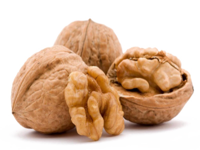 English Walnut PNG Transparent Image