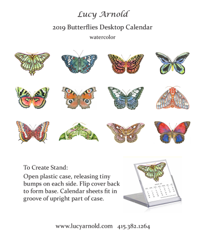2019 Butterflies Desk Calendar - Fine Art of Lucy Arnold