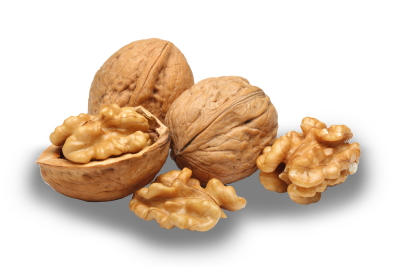 Walnut Download Transparent PNG Image