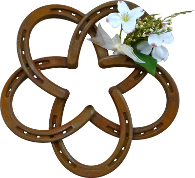 Horseshoe Star Decorative Wall Mounted - RailroadWare