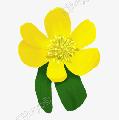 Hand-painted sunshine refreshing fresh decorative small yellow ...