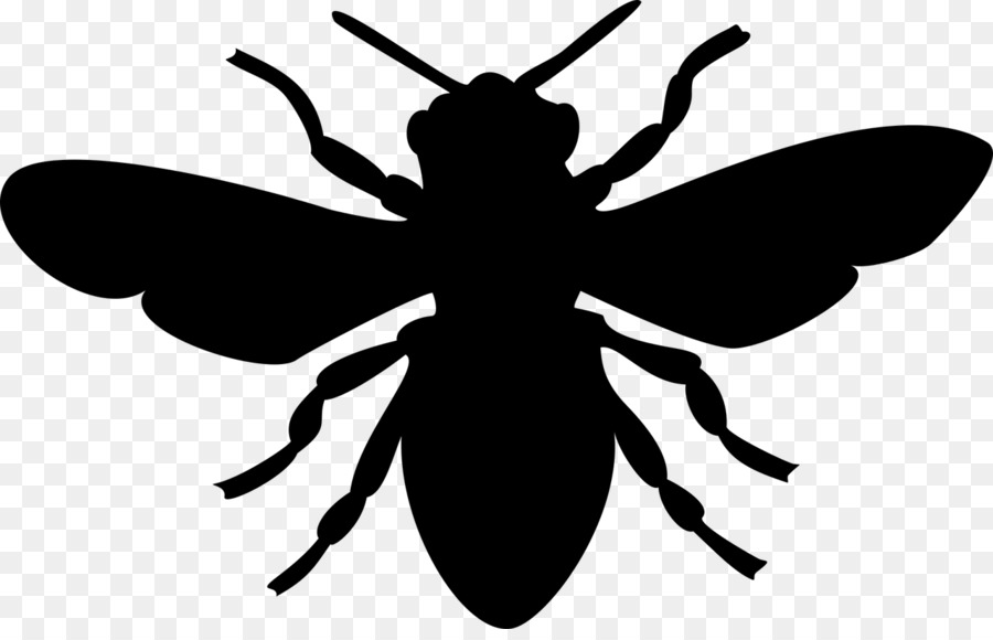 European dark bee Honey bee Silhouette - bee png download - 1280 ...