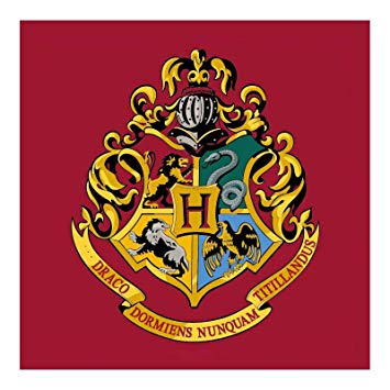 Download Free Png Harry Potter Hogwarts Emblem Square Rug