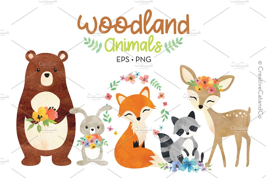 Woodland Animals Vector and PNG ~ Illustrations ~ Creative Market