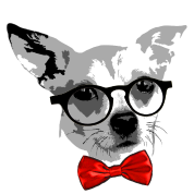 Cool dog png 4 » PNG Image