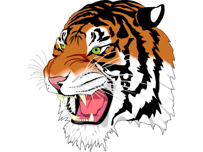 Tiger Png Image Download Tigers