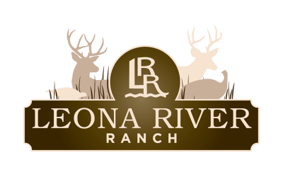 Logo Design - Ranch House Designs - Cattle, Livestock, Agriculture