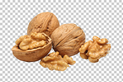 Eastern black walnut English walnut Baklava, Walnut PNG clipart ...