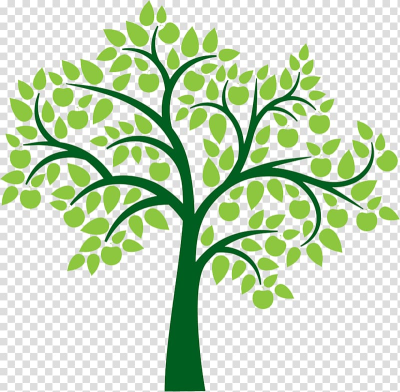 Tree , family tree transparent background PNG clipart | HiClipart