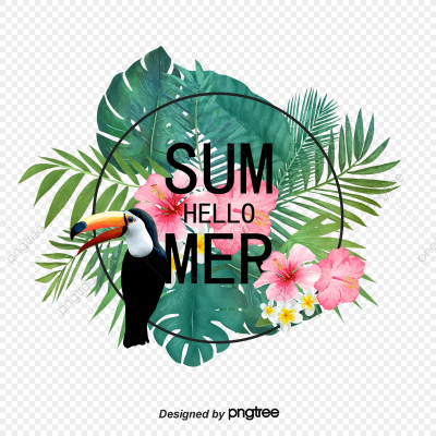 Summer Border Elements Of Tropical Plant Parrot, Summertime ...