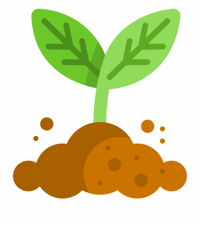 Plant Cartoon Png - Plant Growing Cartoon, Transparent Png ...