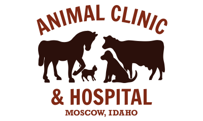 Animal Clinic & Hospital - Moscow, Idaho