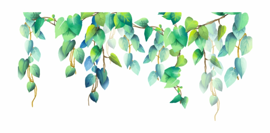green #plant #plants #png #pngstickers - Border Watercolour Leaves ...