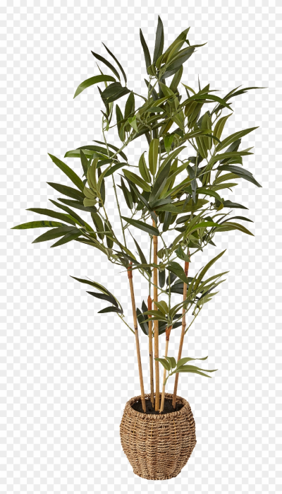 Summer 2016 £45 3ft Artificial Mini Bamboo Tree In - Palm ...