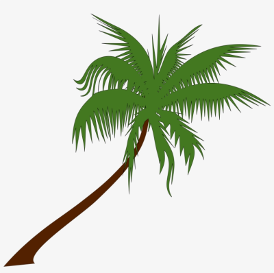 Palm Tree Drawing Png At Getdrawings - Summer Coconut Tree Clip ...