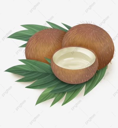 Coconut Juice And Coconut Leaf, Leaves, Summer, Coconut PNG ...