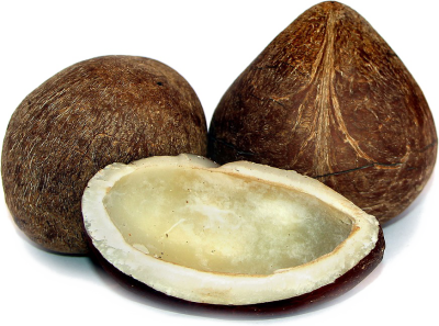 Half Coconut Photos Download HQ PNG