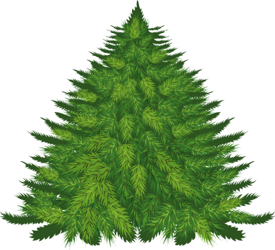 Fir-Tree Png Image