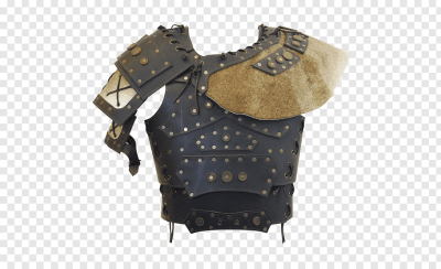 Plate armour Body armor Components of medieval armour Viking Age ...
