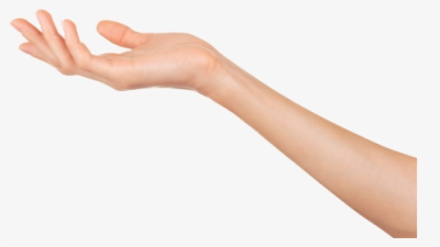 Transparent Mano Png - Woman's Arm And Hand, Png Download ...