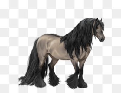Free download Gypsy horse Mane Pony Mustang T-shirt - Gypsy Horse png.