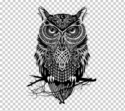Owl Tattoo Drawing Flash PNG, Clipart, Abziehtattoo, Arm, Art ...