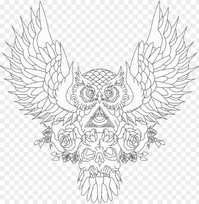 clip art drawing tattoo pinterest tattoos - owl and skull tattoo ...