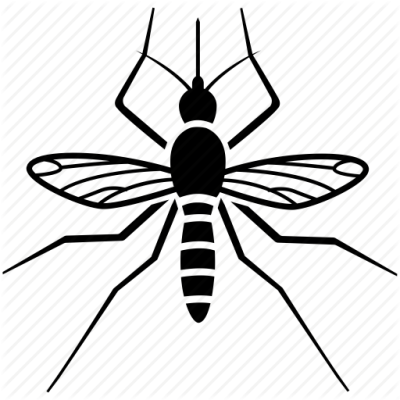 Mosquito clipart midge, Mosquito midge Transparent FREE for ...