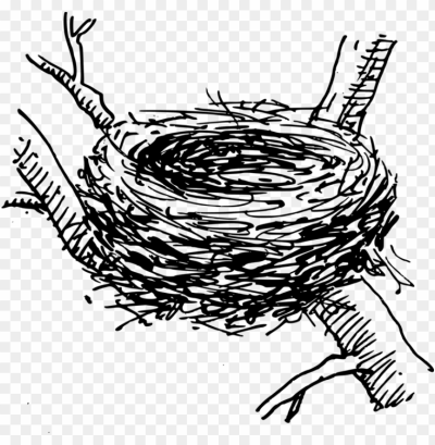 Bird Nest Computer Icons Egg - Crow Nest #1596974 - PNG Images - PNGio