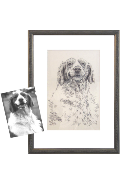 Original Drawing - One Dog: by artist Stephen Kline - drawdogs.com ...