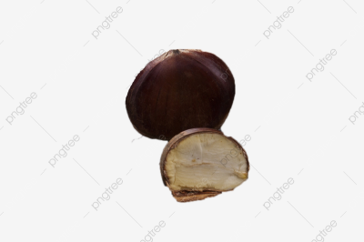 Oil Chestnut Sweet Chestnut Delicious Food Nut, Food Catering ...