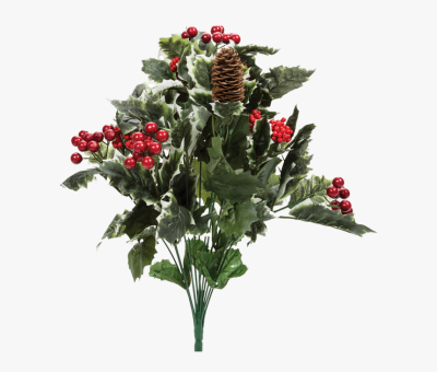 20 - Holly Berry Bush Png, Transparent Png , Transparent Png Image ...