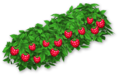 Download Raspberry Bush - Hay Day Berry Bush PNG Image with No ...