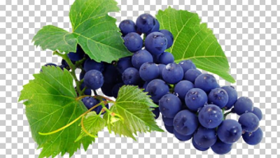 Wine Grape Juice Grapevines Nebbiolo PNG, Clipart, Berry, Bilberry ...