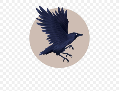 Graphic Design Little Crow Illustration, PNG, 564x629px, Little ...