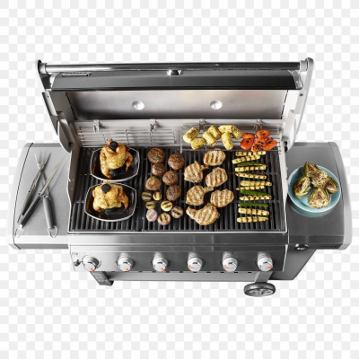 Barbecue Weber-Stephen Products Natural Gas Propane Gasgrill, PNG ...
