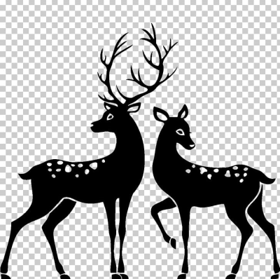 White-tailed Deer Silhouette Stag And Doe PNG, Clipart, Animals ...