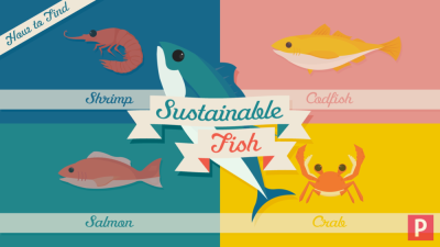 Sustainable Fish — Dennis Fries - The Elephant Den
